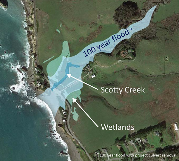 Map depicting Scotty Creek, wetlands and a 100 year flood area.